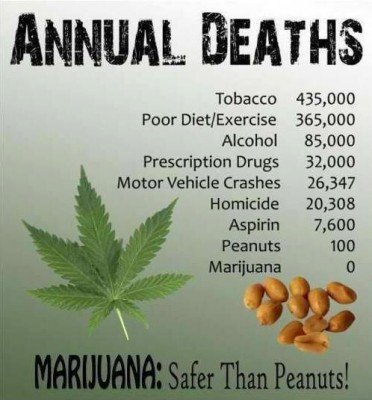 Annual Deaths From Marijuana